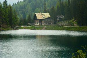 Haus, Wald